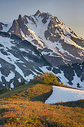 Sunset over NE face of Mount Shuksan (9131 feet, 2783 meters) with view of the Price Glacier, North Cascades Washington