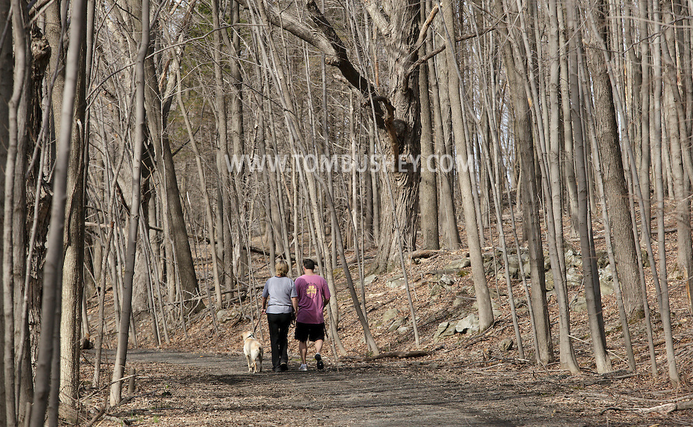 Chester, New York - A couple and their dog walk through Goosepond Mountain State Park on March 20, 2010.