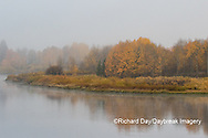 67545-09403 Fall color and fog along the Snake River near Oxbow Bend,  Grand Teton National Park, WY