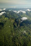 """El cero Campana localizado en la provincia de Panamá cerca de 50 kilómetros (una hora en carro) al oeste de la Ciudad de Panamá. Campana es el primer Parque Nacional de Panamá y fue establecido legalmente en 1967.<br /> <br />  El parque protege 4,816 hectáreas de una gran diversidad biológica. Las famosas ranas """"doradas"""" de Panamá se pueden encontrar aquí. Cerro Campana favorece dos vertientes del Río Sajalices, que fluyen hacia el Pacífico y hacia la cuenca del río Chagres, que es el sistema de acopio para el Canal de Panamá. <br /> <br /> El parque protege una significativa parte del funcionamiento operativo del Canal. Según científicos de la Universidad de Panamá y el Instituto Smithsonian de Investigaciones Tropicales, la elevación de la roca basáltica que forma los acantilados contribuye a la riqueza de la flora y de la fauna. <br /> <br /> Primer Parque Nacional de la Republica de Panamá, declarado en 1966, El parque cuenta con ríos, flora y fauna, visitas escénicas, cascadas, formaciones rocosas, paisajes, grutas o cavernas y senderos terrestres y es un área importante para aves. <br /> <br /> La temperatura de altura es típicamente muy agradable. Cuenta con senderos naturales en el que se pueden observar numerosas plantas y animales. <br /> ©Alejandro Balaguer/Fundación Albatros Media."""
