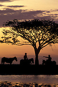 Ganaderos, or cowboys, chat whilst the sun goes down, as they arrive at their evening encampment, Llanos of Casanare, Colombia