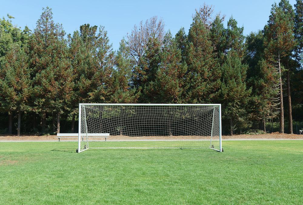 Soccer Field. (31554 x 21372 pixels)