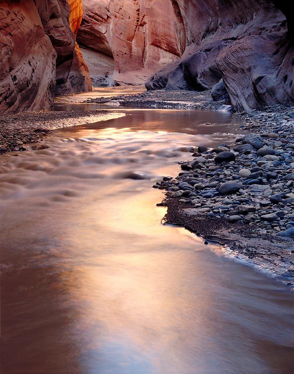 Reflections, Paria River, Paria Canyon/Vermillion Cliffs Wilderness Area, Utah