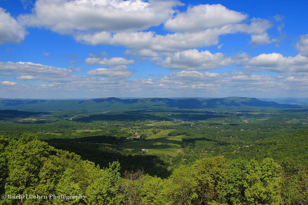 &quot;Sweetness of the Blue Ridge&quot;<br />