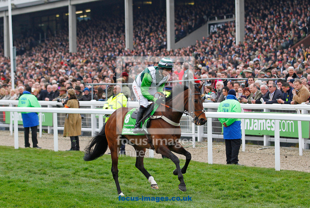 Picture by John Hoy/Focus Images Ltd. 07583422396.13/03/12.Noel Fehily and Rock On Ruby parading in front of the stands before the Champion Hurdle at Cheltenham Racecourse, Gloucestershire