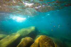 """Boulders Under Lake Tahoe 9"" - Underwater photograph of minnows and boulders taken while swimming at Secret Cove, Lake Tahoe."