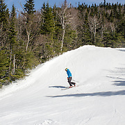 A tele skier heads down the snow-covered spring trails at Wildcat