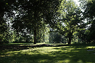 Meadow at Strawberry Hill in Central Park