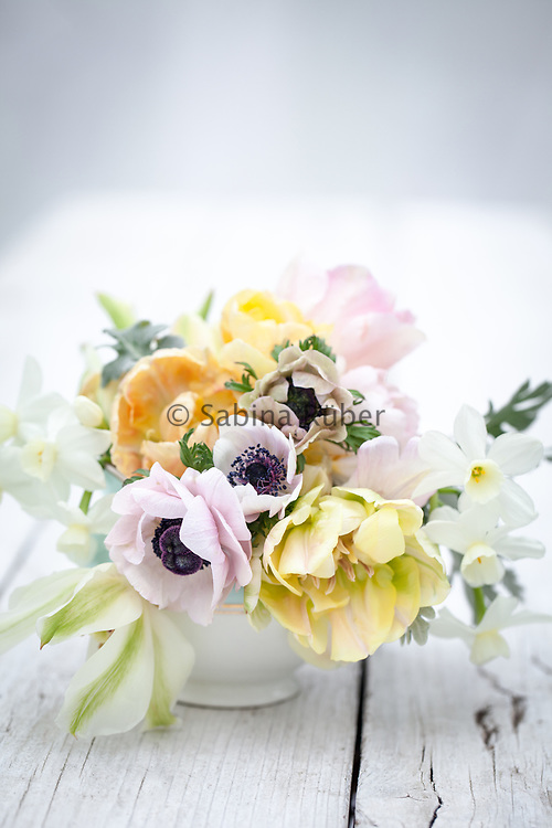 Small Spring flower arrangement with pastel coloured Anemones, Tulips and Narcissi