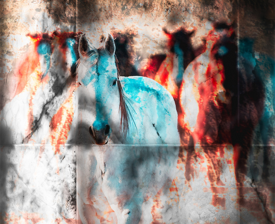 NEW Works by Craig W. Cutler Fine Art / DesignLIFE. <br />