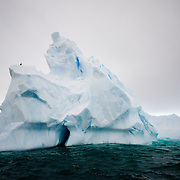 A jagged iceberg floats in the waters of Curtis Bay in Antarctica.