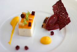 UK ENGLAND BERKSHIRE BRAY 28APR04 - Mango and Douglas Fir Puree at The Fat Duck restaurant in the village of Bray, Berkshire. The Fat Duck recently won the second best award amongst the world's best restaurants and was awarded its third Michelin Star in January.....jre/Photo by Jiri Rezac for Bild am Sonntag....© Jiri Rezac 2004....Contact: +44 (0) 7050 110 417..Mobile:  +44 (0) 7801 337 683..Office:  +44 (0) 20 8968 9635....Email:   jiri@jirirezac.com..Web:    www.jirirezac.com....© All images Jiri Rezac 2004 - All rights reserved.