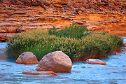 The turquoise waters of the Little Colorado River. Near the confluence with the Colorado River in Grand Canyon National Park.