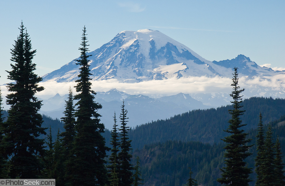 From Goat Rocks Wilderness Area we observe Mount Rainier (14,411 feet elevation) in the distance. Gifford Pinchot National Forest, Washington, USA.