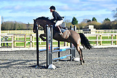 06 - 28th Jan - Show Jumping