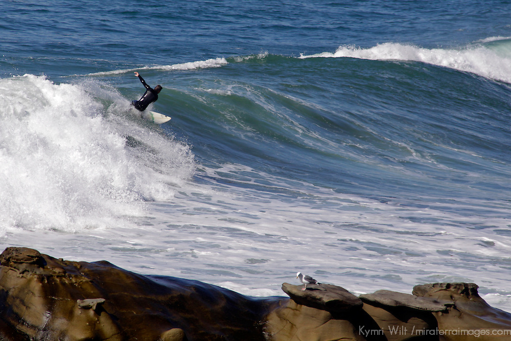 USA, California, San Diego. Surfing off the coast of La Jolla during a rare large winter swell.