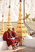 Monks reading, Kutho Taur Pagaoda of 729 marble slabs, Mandalay, Burma