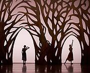 The Birmingham Royal Ballet <br /> Three Short Story Ballets (mixed Bill) <br /> at Birmingham Hippodrome, Birmingham, Great Britain <br /> Rehearsal 21st June 2017 <br /> <br /> <br /> Arcadia <br /> (word Premier)<br /> Choreography by Ruth Brill<br /> Music:John HarleDesigns:Atena AmeriLighting:Peter Teigen<br /> <br /> <br /> <br /> Photograph by Elliott Franks <br /> Image licensed to Elliott Franks Photography Services