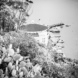 Catalina Island Avalon Casino black and white picture. Catalina Casino is a historic theatre built in the early 1900s. Catalina Island is a popular travel destination off the coast of Southern California in the United States.