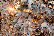 WA14463-00...WASHINGTON - Winter sunrise at Echo Ridge above the town of Chelan.