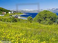 Kvalsund, landscape, Norway, Finnmark