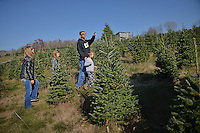 A family from Rougemont searches for the perfect frasier fir Christmas tree at Clawson's Choose and Cut outside Boone.