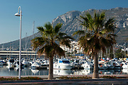 Boats and sailboats at the harbour of Denia in sunset, Denia, Alicante province, Valencia Community, Spain