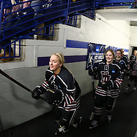 Women's Ice Hockey: University of St. Thomas (Minnesota) Tommies vs. Hamline University Pipers