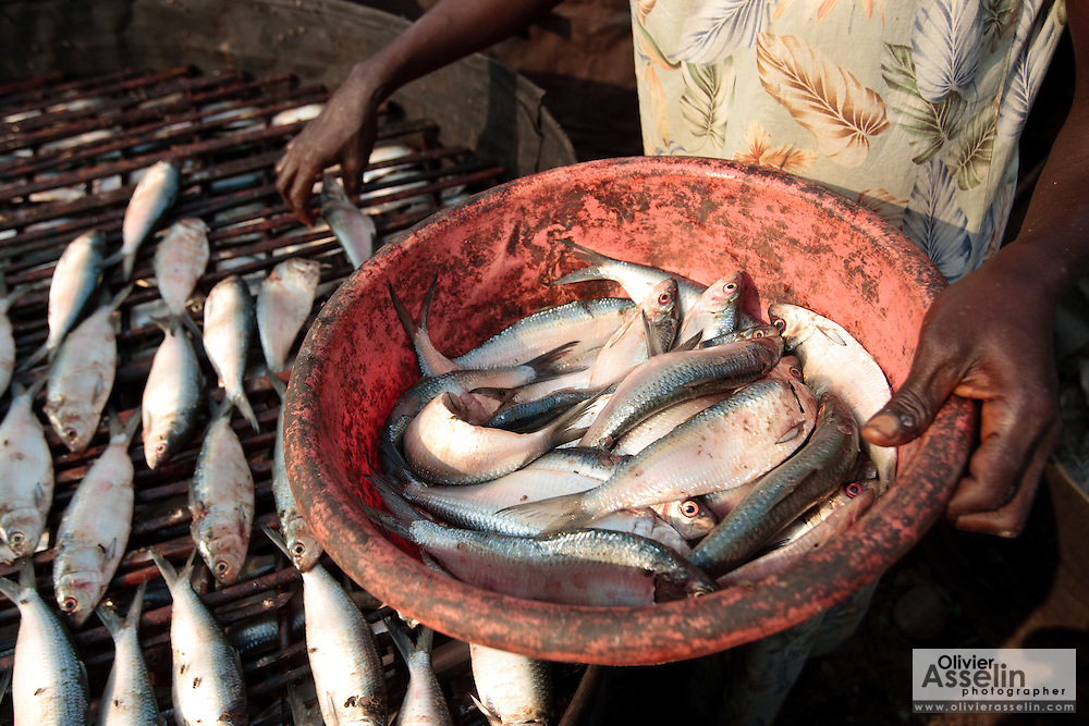 A woman lays out fish to somke in the West Point slum of Monrovia, Montserrado county, Liberia on Monday April 2, 2012.