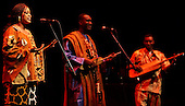 Bassekou Kouyate Barbican 28th April 2008