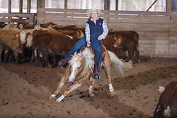 April 29 2017 - Minshall Farm Cutting 1, held at Minshall Farms, Hillsburgh Ontario. The event was put on by the Ontario Cutting Horse Association. Riding in the Ranch Class is Shelly Price on Smart Juicy Chex owned by the rider.