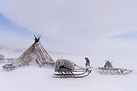 Chum im Schneesturm, Polarural, Russland