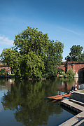 "Maidenhead, United Kingdom. Maneuvering the punt for mooring  ""Thames Punting Club Regatta"", Bray Reach.<br /> 08:54:32 Sunday  06/08/2017<br /> <br /> [Mandatory Credit. Peter SPURRIER Intersport Images}.<br /> <br /> LEICA Q (Typ 116) 28mm  f4   1/800 /sec    100 ISO River Thames, .......... Summer, Sport, Sunny, Bright, Blue Skies, Skilful,"
