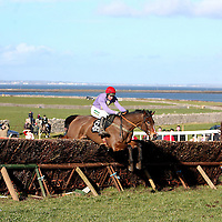 Champion jockey Derek O' Connor and Nothinaddedbuttime take the first place in teh 2nd at the annual Bellhabour point to point on Sunday.<br /> Photograph by Yvonne Vaughan