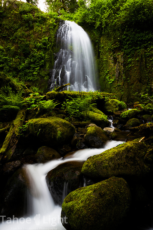 Upper McCord Falls in the Columbia River Gorge in Oregon. This is off the trail waterfall is hard to find. The lush greenery and waterfalls of the Pacific Northwest are a must visit.