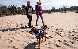 18-03-2018 NED: We hike to change diabetes, Soest<br /> Training voor de Camino 2018 op de Soesterduinen / Mirjam, Belder en IJda