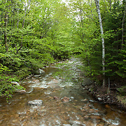 The Mad River, Waterville Valley, NH in the White Mountain National Forest