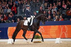 Veeze Bart, NED, Daily Diamond<br /> KWPN Stallionshow - 's Hertogenbosch 2018<br /> © Hippo Foto - Dirk Caremans<br /> 02/02/2018