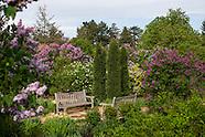 20140506 Spring Gardens