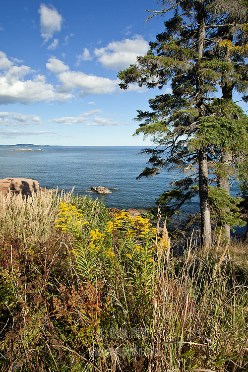 An autumn view from along the park loop road at Acadia National Park.