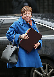 © Licensed to London News Pictures. 24/11/2015. London, UK.  Baroness Stowell of Beeston, Leader of the House of Lords, arrives for a cabinet meeting in Downing Street. Photo credit: Peter Macdiarmid/LNP