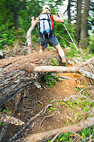 Female hiker stepping over fallen tree.