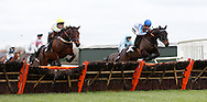 Tom Cannon riding Theo's Charm (R) clears a hurdle before winning the J H Builders Novices´ Hurdle at Plumpton Racecourse - 13 Dec 2015