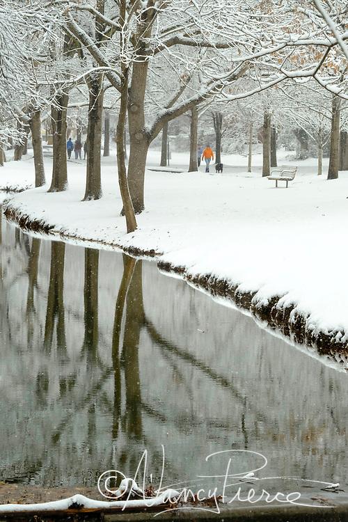 January 2017 snow. Freedom Park.