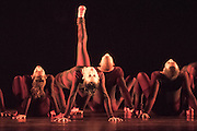 Brazil's internationally acclaimed dance company Grupo Corpo returns for a UK-wide Dance Consortium tour that begins at London's Sadler's Wells on 1 October.<br />  <br /> With a history stretching back nearly 40 years, Grupo Corpo's dancers combine the precision of classical ballet with the sensuality and passion of Latin dance rhythms.