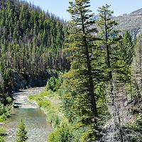 upper birtch creek badger two medicine