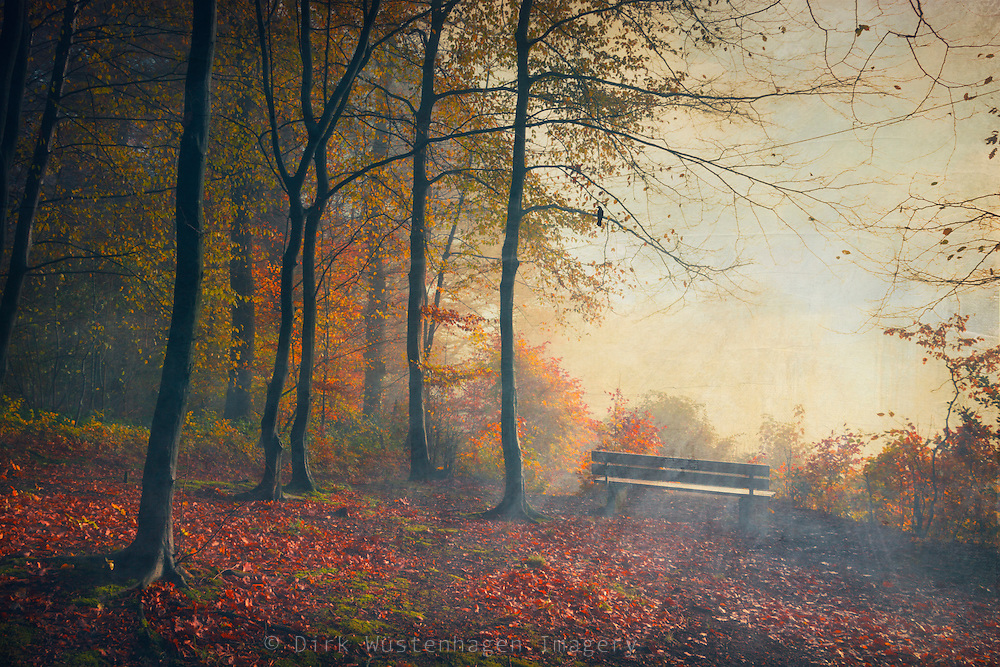 Bench at the fringe of a nearby forest overviewing the city of Wuppertal - on a day without fog :-)