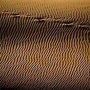 Zebra like patterns in the dunes at Sossusvlei park. Namibia boasts the world?s oldest and largest sand dunes, extending for 400 miles along the coast and more than 80 miles inland. July 17, 2008. Photo by Evelyn Hockstein for The New York Times.