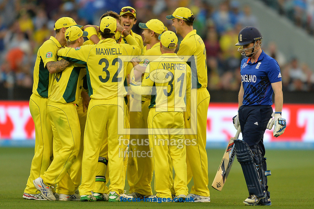Australia celebrate the wicket of England's Eoin Morgan during the 2015 ICC Cricket World Cup match at Melbourne Cricket Ground, Melbourne<br /> Picture by Frank Khamees/Focus Images Ltd +61 431 119 134<br /> 14/02/2015