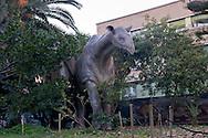 """Roma 30 Dicembre 2014<br /> """"Dinosauri in Carne e Ossa"""", mostra di dinosauri e altri animali preistorici estinti, a grandezza naturale, allestita dall' Associazione paleontologica ambientale, all'Università La Sapienza di Roma. La mostra sara aperta fino al 31 Maggio 2015. La scultura di un Indricotherium transouralicum.<br /> Rome December 30, 2014<br /> """"Dinosaurs in Flesh and Bones"""", an exhibition of dinosaurs and other prehistoric animals extinct, to life-sized, prepared by Association paleontological environmental, a La Sapienza University of Rome. The exhibition will be open until May 31, 2015. The sculpture of Indricotherium transouralicum."""